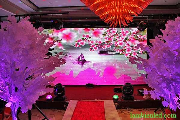 lợi ích màn hình led đám cưới